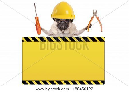 pug dog holding pliers and screwdriver behind yellow warning sign isolated on white background