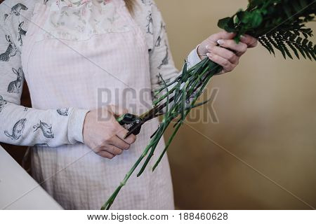 woman florist in apron cuts off stems of flowers indoor. Female florist preparing bouquet in flower shop. close up