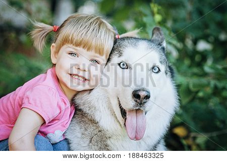 Cute Little Girl Hugging A Husky