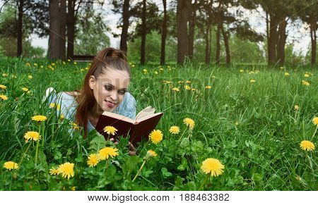 Girl Reading A Book In The Park.