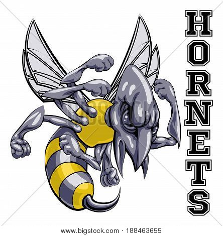 An illustration of a cartoon hornet sports team mascot with the text Hornets