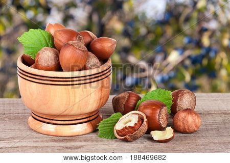 Hazelnuts with leaves in a wooden bowl on a wooden table with blurred garden background.