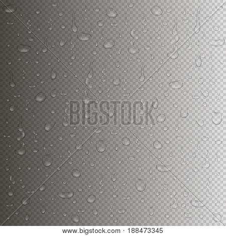 Transparent water drops background. Rain drops in realistic style with reflection. Vector illustration