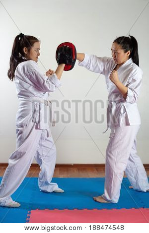 Two girls demonstrate martial arts working together. Fighting position active lifestyle practicing fighting techniques
