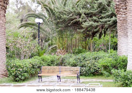 Rest area between palm trees with a bench and sunbeds in an amoudara garden in Crete