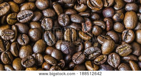 Texture of seeds of Brazilian coffee grounds.