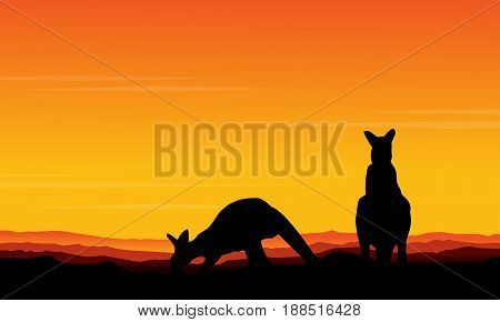 Vector art kangaroo beauty scenery collection stock