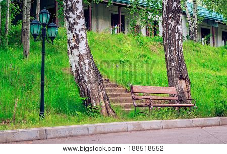 A lonely bench between the trunks of two birches behind a bench stairs leading up to the cottage is a good place for seclusion and rest