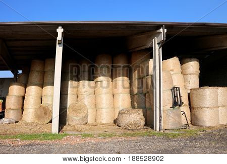Deposit Bale Of Dry Hay In The Farm Shed