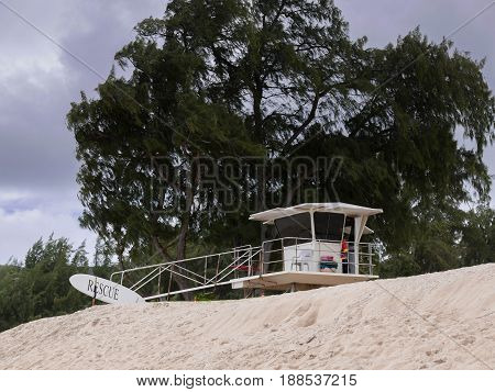 Lifeguard rescue station with tree on Hawaii coast