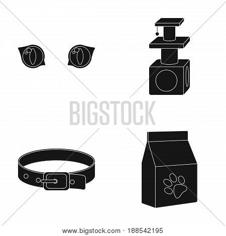 Cat's-eye, cat lodge, collar, package with food.Cat set collection icons in black style vector symbol stock illustration .