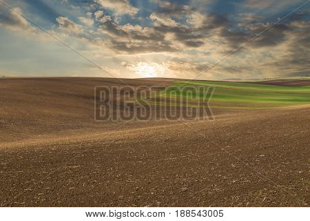 Sunset over the field. Agricultural rural landscape colorful hills: plowed dark earth and green fields in the setting sun