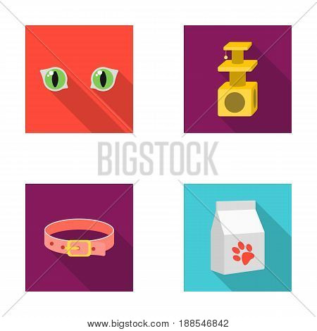 Cat's-eye, cat lodge, collar, package with food.Cat set collection icons in flat style vector symbol stock illustration .