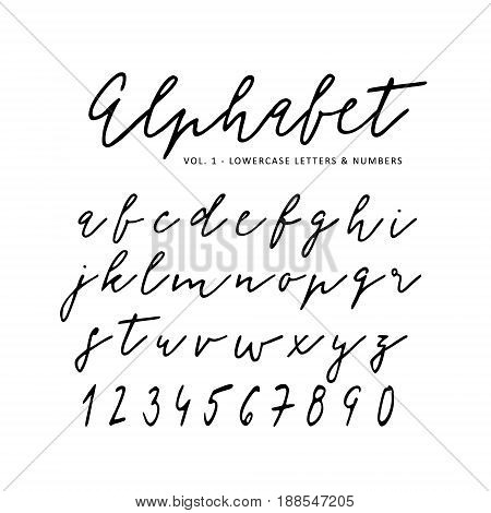 Hand drawn vector alphabet. Signature script font. Isolated letters written with marker, ink, calligraphy, lettering.