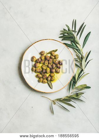 Pickled green Mediterranean olives in virgin olive oil on white ceramic plate and olive tree branch over grey marble background, top view, vertical composition
