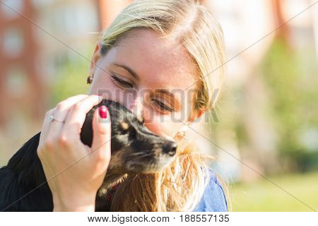 Concept of pets and happy owner - woman is holding a dog outdoors