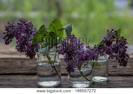 .lilac Flowers In Jars On The Wooden Window Sill