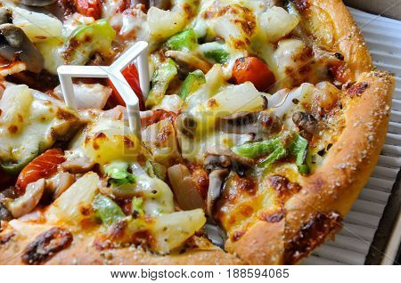 Healthy vegetables and mushrooms vegetarian pizza, pizza in delivery box