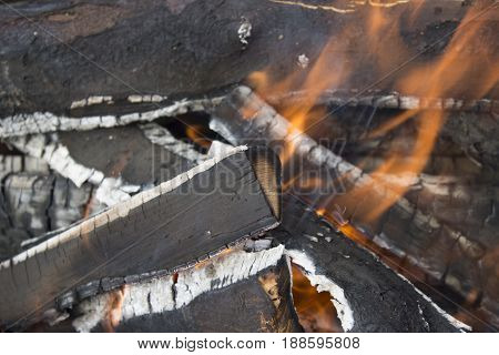 wood burning, wood burning, forest fire near the house, the house is under threat from fire