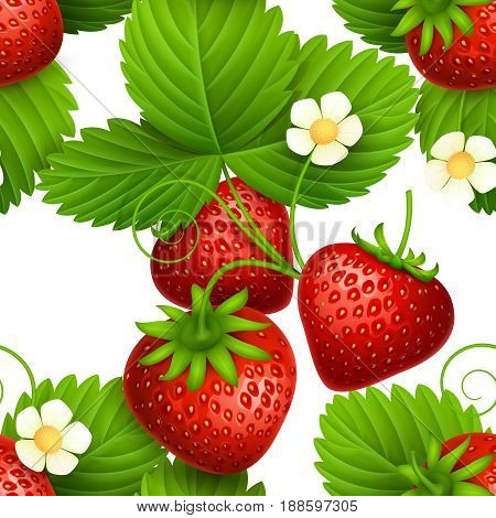Plant seamless vector textures with eating strawberries. Repeating pattern for fresh strawberry juice and organic fruit tea. Illustration of background with red strawberry
