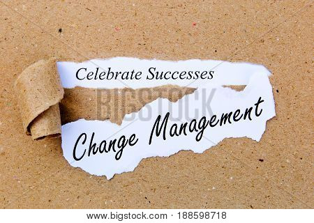 Change Management - Celebrate Successes - successful strategies for change management