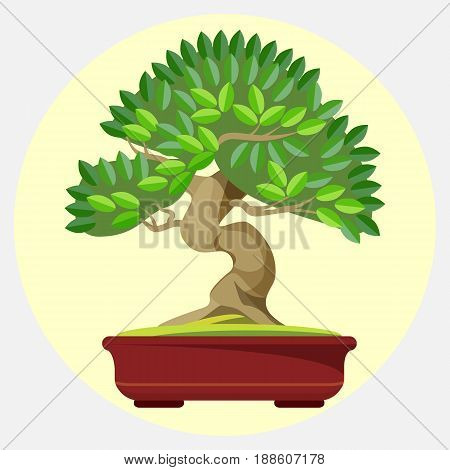 Bonsai Japanese art form using trees grown in container vector illustration web button. Green tree with massive trunk grows in miniature pot