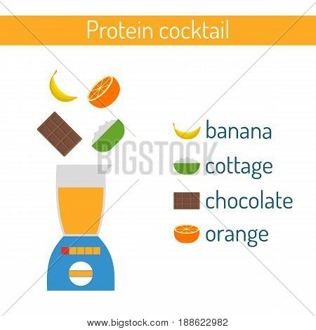 Vector Flat Protein Cocktail Ingredients Recipe