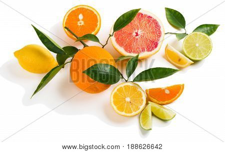Different citrus fruits (orange lemon lime and grapefruit ) with twigs and leaves isolated on white background.