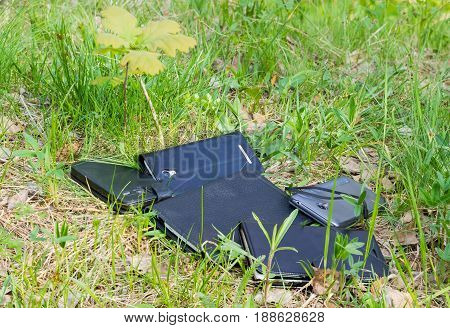 Several different smartphones in the leather and plastic covers among the grass in forest
