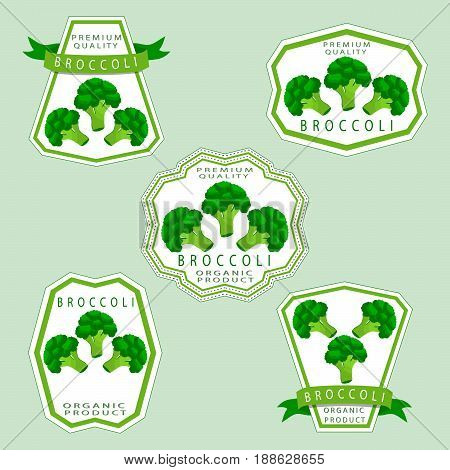 Vector illustration logo for whole ripe vegetables broccoli,with green stem leaf,cut sliced,close-up background.Broccoli drawing pattern consisting of tag label bow,peel ripe food.Eat fresh broccolis.