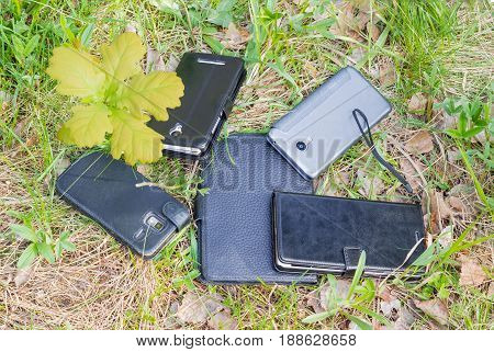 Several different smartphones in the leather and plastic covers and young oak among the young and withered grass and leaves in forest