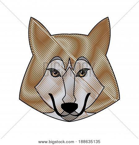 portrait wolf animal danger wildlife vector illustration