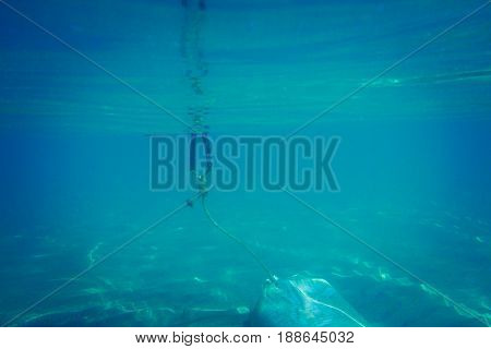 Rope of marker buoy underwater. Water background.