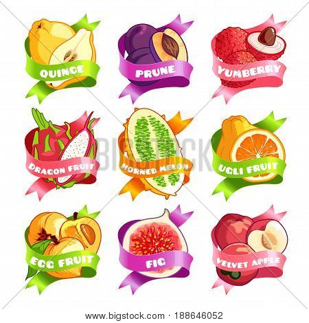 Nine stickers with ribbon and different fruits. Quince prune yamberry pitaya horned melon ugli fruit egg fruit fig and velvet apple. Vector illustration isolated on a white background.