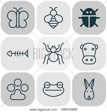 Zoology Icons Set. Collection Of Beetle, Toad, Kine And Other Elements. Also Includes Symbols Such As Fish, Amphibian, Bumblebee.