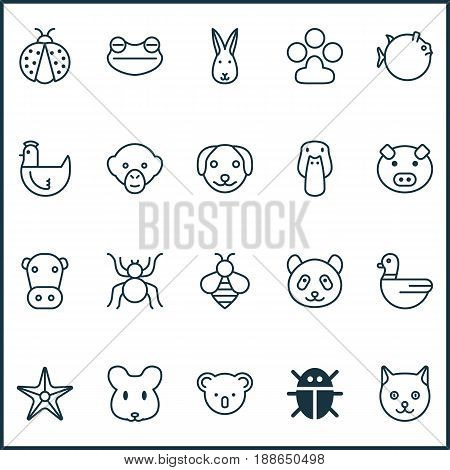 Zoo Icons Set. Collection Of Beetle, Bumblebee, Hen And Other Elements. Also Includes Symbols Such As Honey, Sea, Piglet.