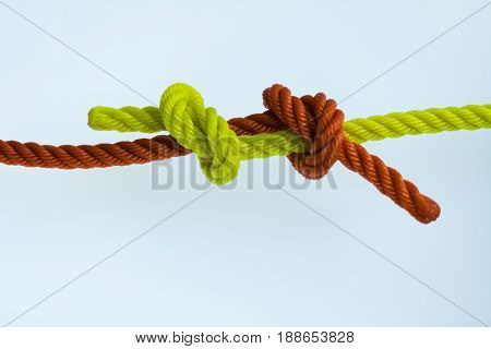Fisherman's knotted  1 of 10 most useful knot