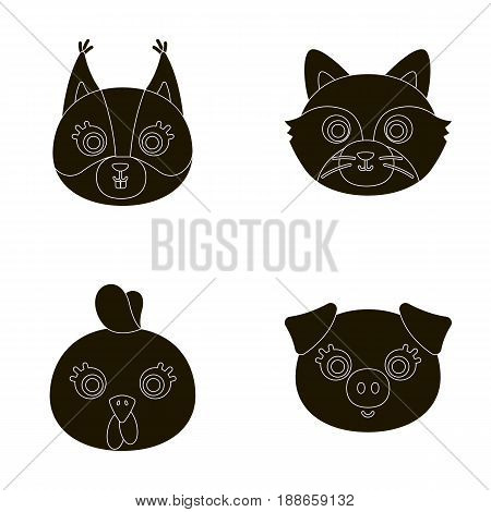 Protein, raccoon, chicken, pig. Animal's muzzle set collection icons in black style vector symbol stock illustration .