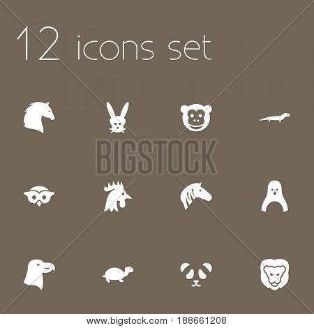 Set Of 12 Zoology Icons Set.Collection Of Ape, Gecko, Tortoise And Other Elements.