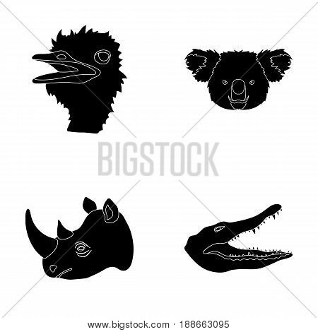 Ostrich, koala, rhinoceros, crocodile, realistic animals set collection icons in black style vector symbol stock illustration .