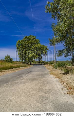View at country road in Languedoc-Roussillon province in France