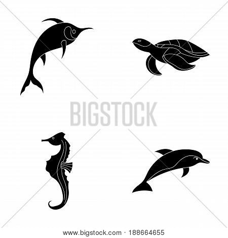 Merlin, turtle and other species.Sea animals set collection icons in black style vector symbol stock illustration .