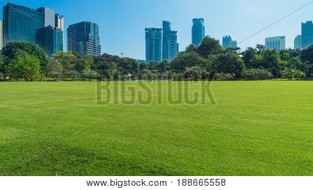 grassland green field with trees and buildings temple and grand palace in blue skyBangkok thailand