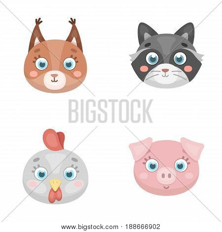 Protein, raccoon, chicken, pig. Animal s muzzle set collection icons in cartoon style vector symbol stock illustration .