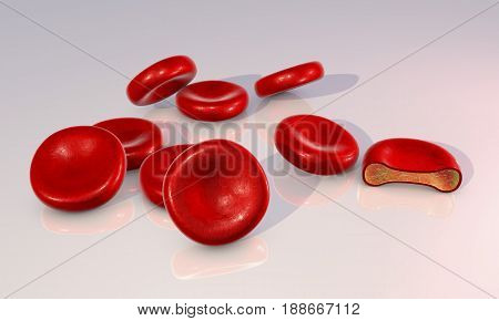 Red blood cells and transverse section of the cell. 3D illustration showing presence of hemoglobin solution inside erythrocyte