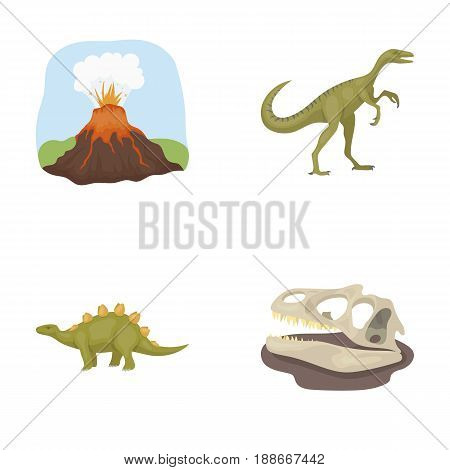 Volcanic eruption, gallimimus, stegosaurus, dinosaur skull. Dinosaur and prehistoric period set collection icons in cartoon style vector symbol stock illustration .