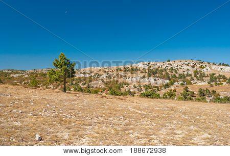 Beautiful autumnal landscape on Ai-Petri mountain tableland in Crimean peninsula