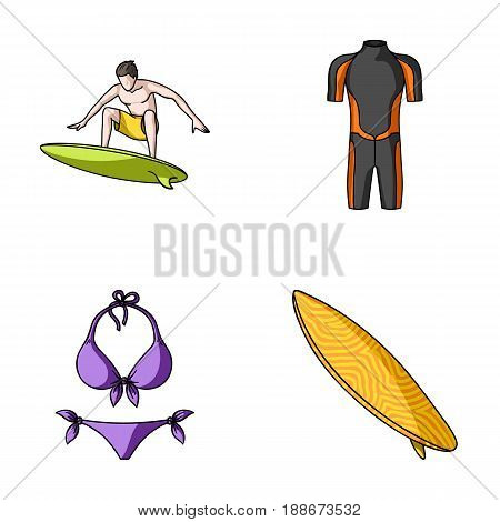 Surfer, wetsuit, bikini, surfboard. Surfing set collection icons in cartoon style vector symbol stock illustration .