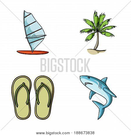 Board with a sail, a palm tree on the shore, slippers, a white shark. Surfing set collection icons in cartoon style vector symbol stock illustration .