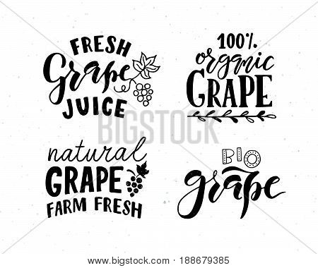 Hand Sketched Apple Lettering Typography. Concept For Farmers Market, Organic Food, Natural Product
